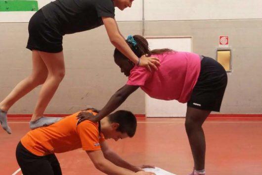 Discipline sportive - equilibrio