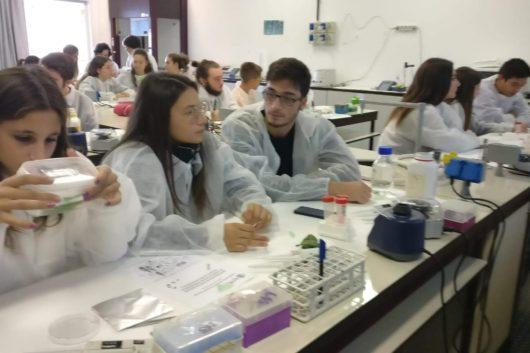 Settimana della Scienza Pavia ottobre 2018/4